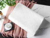 V6家居 慕思集团时尚品牌 曲线成人枕 乳胶 双层枕套 舒适透气  枕芯